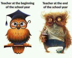 Nauczycielu, przekwalifikuj się!