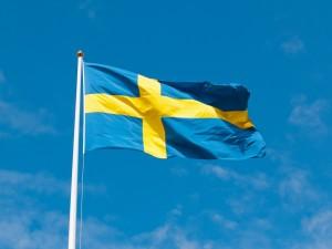 Szwedzki online. Źródło: Pixabay.com.