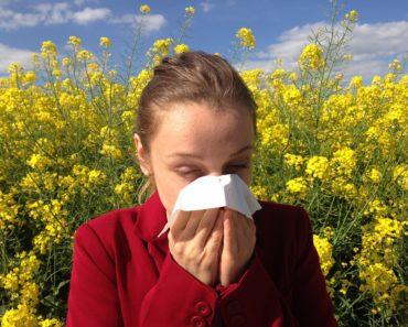 Jak radzić sobie z alergią?