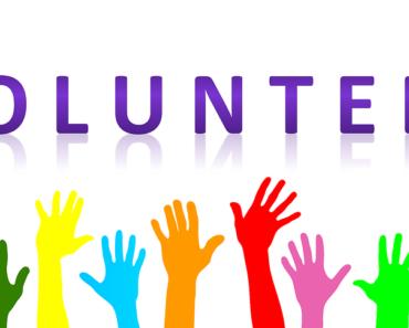 Letni wolontariat – w czym można wziąć udział?